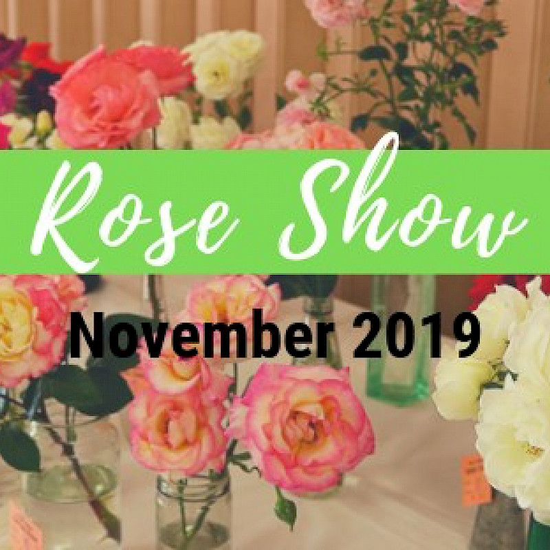 4th Annual Rose Show image